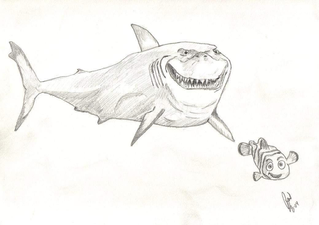 Nemo Bruce Drawing Nemo Bruce